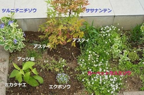細長い花壇1