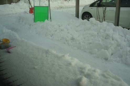 雪2 (1)