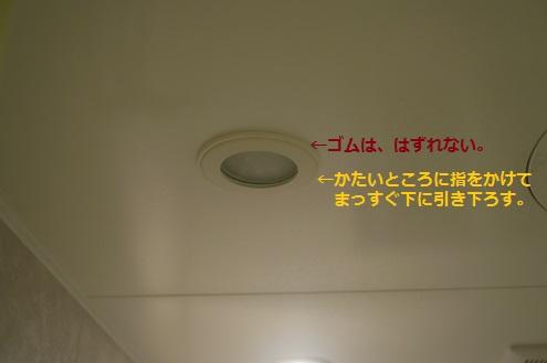浴室照明の取替