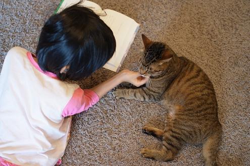 猫と読書 (1)